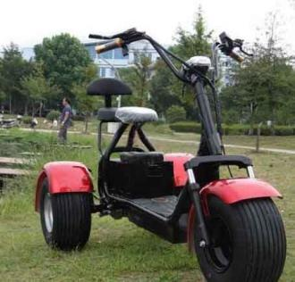 Electric Chopper 66 60V tricycle 30km/h 200km ML-SC09